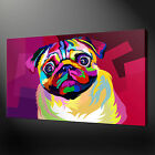 PUG DOG ABSTRACT CANVAS PRINT PICTURE WALL ART FREE UK DELIVERY VARIETY OF SIZES
