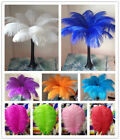 Wholesale 10-200pcs High Quality Natural Ostrich Feathers 6-24inches / 15-60cm