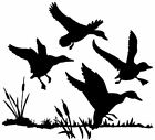 Ducks In Cattails Decal MD Bird Waterfowl Hunting Vinyl Window Truck Stickers