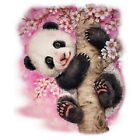Cherry Blossoms Panda  Tshirt  Colors/Size