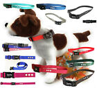 SportDOG SDF-R DOG FENCE COLLAR RECEIVER REPLACEMENT NYLON STRAP SDF100A Petsafe