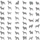 dog breed silhouette vinyl stickers for cars vans caravans window sticker decal