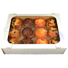 14 X 10 X 3.5 INCH CORRUGATED DELIVERY TRAY CHOOSE YOUR QUANTITY