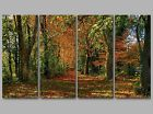 Autumn Forest Trees Leaves Fall Colours 4 Panel Split Canvas Picture Wall Art