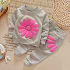 2PCS Toddler Kids Baby Girls Outfits Long Sleeve T-shirt Tops+Pants Clothes Sets