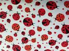 CUDDLES PRINT  LADY BIRD FLANNEL FABRIC - 2841