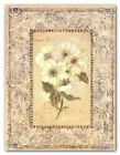 Le Blanc by Shari White~Botanical with Floral Toile Border Art Print