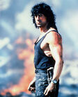 Sylvester Stallone Movie Photo [S266192] Size Choice