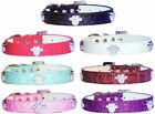Luxury Croc Style Diamante Buckle Paw Dog Collar PU Leather Bling UK Seller