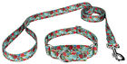 Country Brook Design® Martingale Collar & Leash - Floral Collection