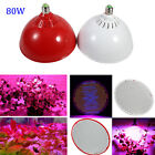 80W Red+Blue E27 LED Plant LED Grow Light Lamps For plant Growing Hydroponics LJ