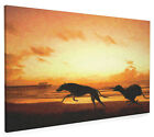 Greyhounds on Beach Box Canvas and Poster Print (567)