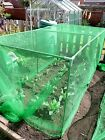 Fruit and Vegetable Protective Cage supplied with anti butterfly netting.