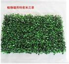 Simulation Pastic Grass Lawn Artificial Garden Ornament Wall Hanging Decor Plant