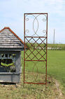 Wrought Iron Skyview Trellis for Climbing Vines or Flowers