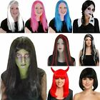 Ladies Witch Devil Adams Plait Long Straight Halloween Spooky Wig Fancy Costume