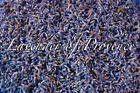 Lavender of Provence primary culinary cooking edible dried flower buds 3 4 6 8oz