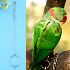 3.5/4.5/5.5mm Stainless Steel Pet Parrot Birds Foot Stand Chain + Ring Toys