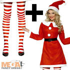 Miss Santa Claus + Tights Ladies Christmas Fancy Dress Xmas Holiday Costume Kit