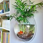 Hanging Wall Mount Vase Fish Tank Bowl Aquarium Plant Pot Creative Acrylic Decor
