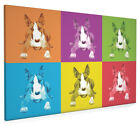 English Bull Terrier Box Canvas and Poster Print (144)