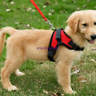 Large Dog Leash Harness A[...]