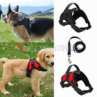 Kyпить Large Dog Leash Harness Adjustable Pet Safe Control Training Walking Collar на еВаy.соm