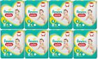 Pampers Premium Protection Pants Größe 4 Maxi, 9-15 kg, 19 bis 228 Windeln