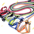 Dog Leash Traction Harness Chest Girdle Suspender Chain Rope Pet Supplies RT