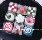 Japanese Sweets Jelly Dessert Various set Kyoto Wagashi Anko Candy Snack
