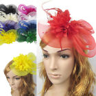 Lady Fascinator Feather Flower Wedding Party Pillbox Hat Headband Clip Veil Gift