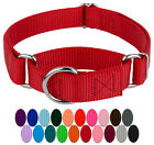 Country Brook Design® Martingale Heavyduty Nylon Dog Collar