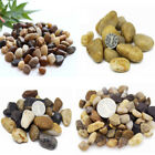 80g DIY Micro Landscape River Stone Decoration Garden Succulent Plants Flower Po
