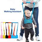 Внешний вид - Baby Toddler Walking Wing Belt Safety Harness Strap Walk Assistant Baby Carry