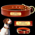 Leather Personalized Dog Collar ID Nameplate Free Engraved Custom Collar XS-L
