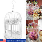 Metal Hollow Birdcage Votive Candle Holder Hanging