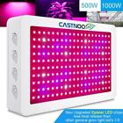 CASTNOO 1000W 500W LED Grow Lamp Full Spectrum Hydro Veg Flower Grow Panel FTJ