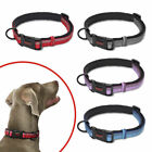 HALTI Premium Dog Collar - Strong Adjustable Soft Reflective - XS-L
