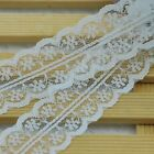 Fabric Lace Tirm Floral Pattern for Home Decor Dress Altered Coutur  LC19