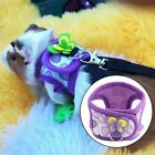 Adjustable Small Animal Chinchilla Walking Leash Pet Vest Training Harness Vest