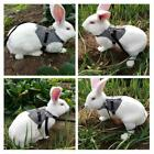 Adjustable Small Pet Rabbit Gentlemanly Style Training Harness with Leash