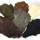 HARELINE HEN CAPE - Fly Tying Soft Hackle Neck Feathers - 6 Colors Available!