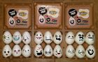 Stress Reliever, Sensory Toy, Squeezable Egg, Mushimoto Eggies NEW Funny Faces!