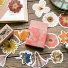 """Vintage Flora"" 45pcs Beautiful Stickers Scrapbooking Craft Decor Gift Stickers"
