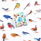 """Little Birds"" 45pcs Beautiful Stickers Scrapbooking Craft Decor Cute Sticker"
