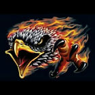Flaming Eagle T-Shirt All Sizes And Colors