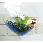 New Wall Mount Fish Bowls for Home Deco Aquarium Heart Flower : Option 3 Type
