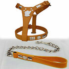 QUALITY LEATHER STAFF DOG FACE HARNESS WITH CHROME CHAIN LEAD SET IN 8 COLORS