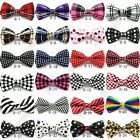 New Colorful Strip Bow Tie Necktie Cravat Polyester Silk Elegant For Men Adults