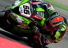 TOM SYKES 12 (SUPERBIKES 2013) PHOTO PRINT